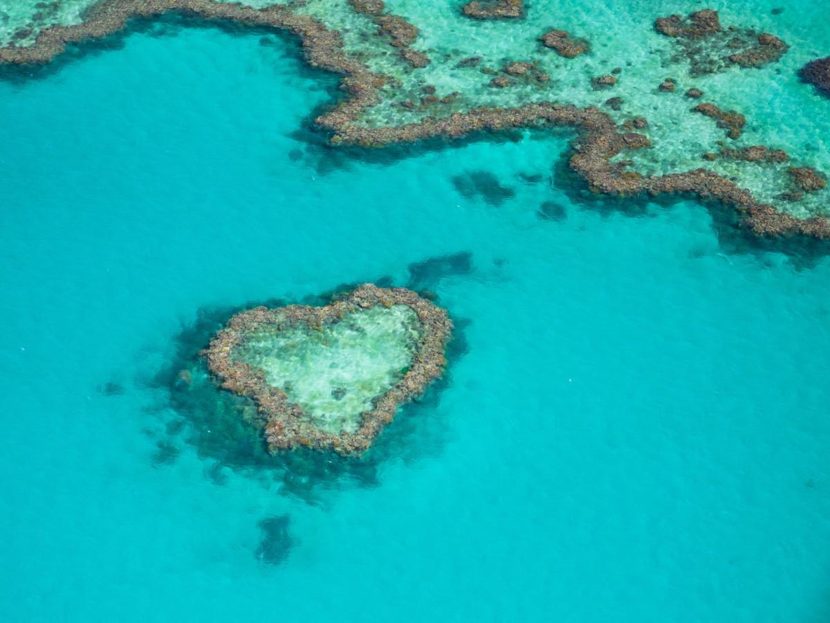 世界最大の美しい珊瑚礁が広がる「グレート・バリア・リーフ」